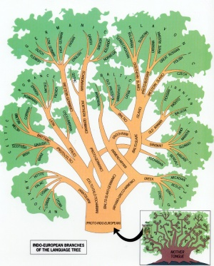 tree of languages, indo-european