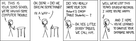 SQL Injection comic via XKCD.COM